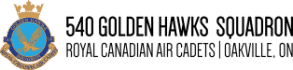 540 Golden Hawks Logo